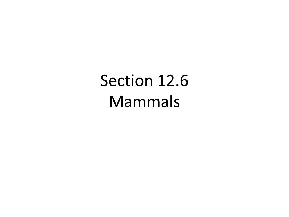 Section 12.6 Mammals