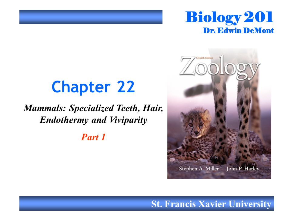 Mammals: Specialized Teeth, Hair, Endothermy and Viviparity