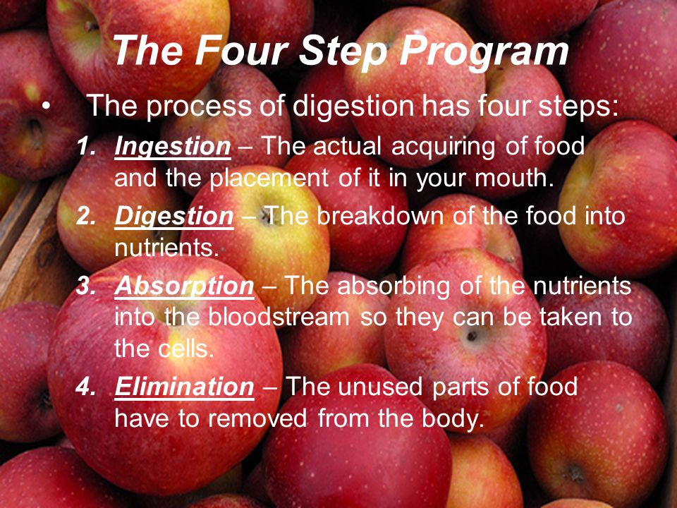 The Four Step Program The process of digestion has four steps: