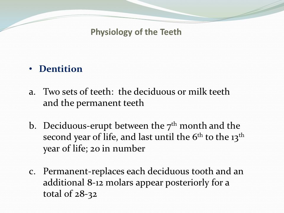 Physiology of the Teeth