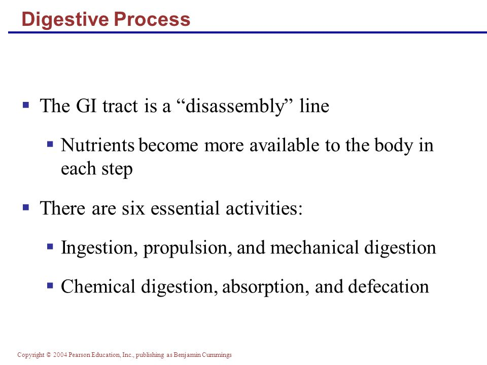 The GI tract is a disassembly line