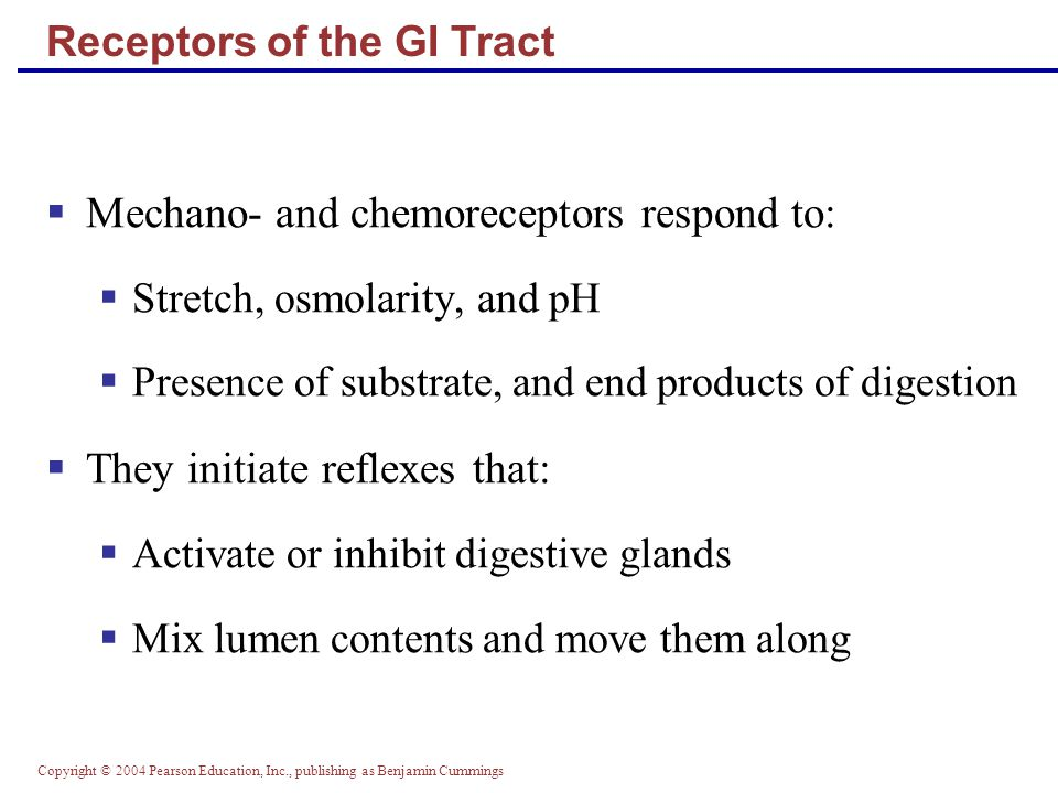 Receptors of the GI Tract