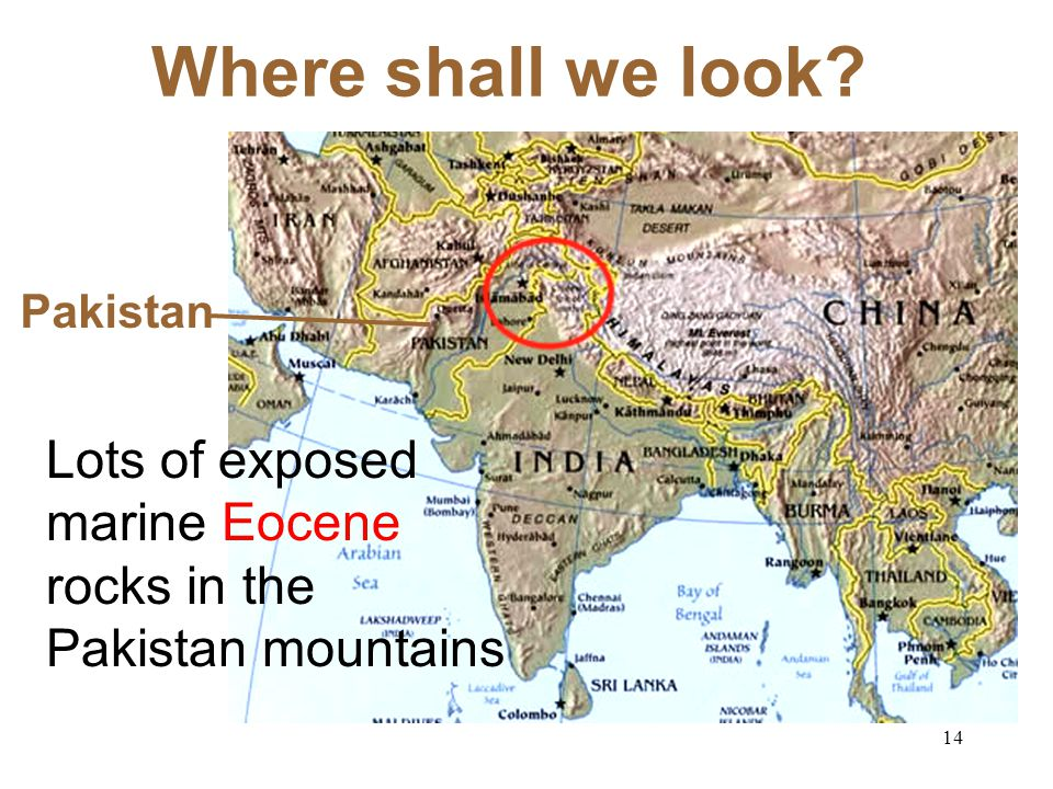 Where shall we look Pakistan Lots of exposed marine Eocene rocks in the Pakistan mountains