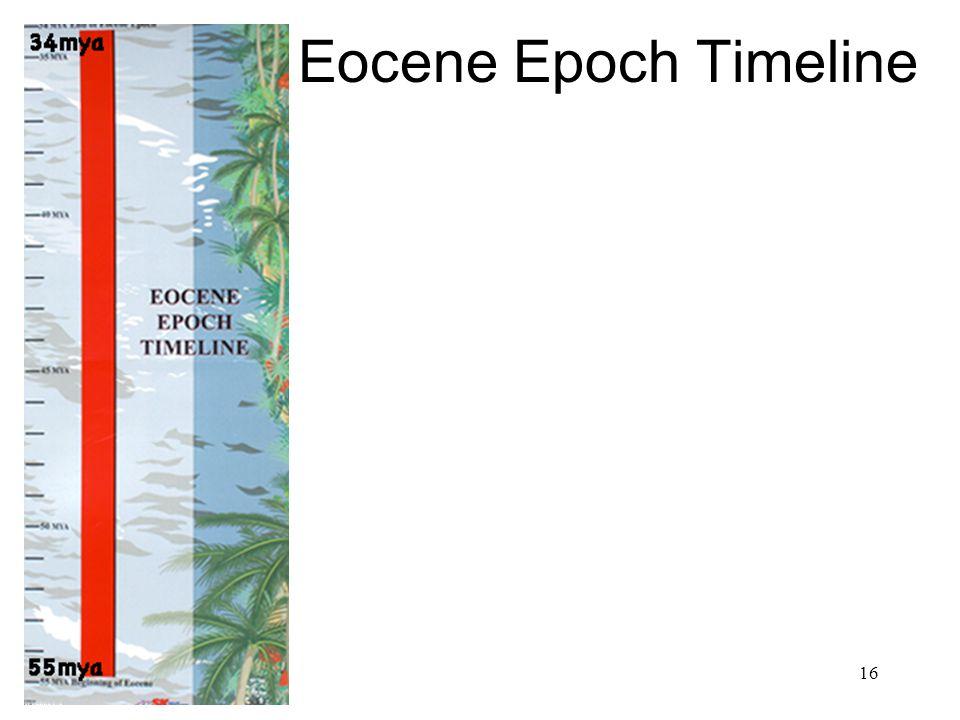 Eocene Epoch Timeline