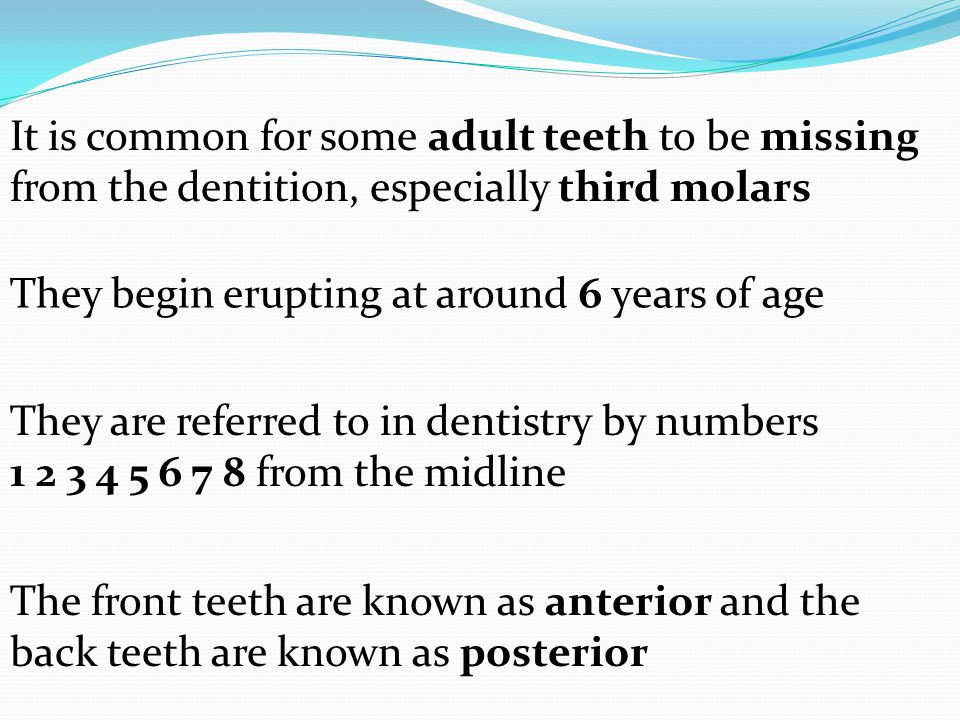 It is common for some adult teeth to be missing from the dentition, especially third molars