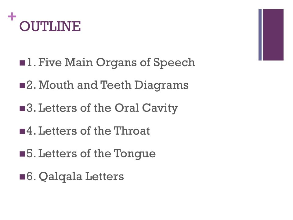 OUTLINE 1. Five Main Organs of Speech 2. Mouth and Teeth Diagrams
