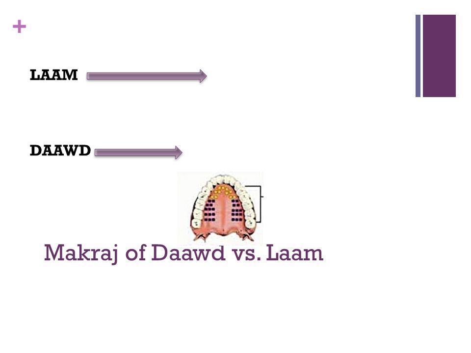 LAAM DAAWD Makraj of Daawd vs. Laam