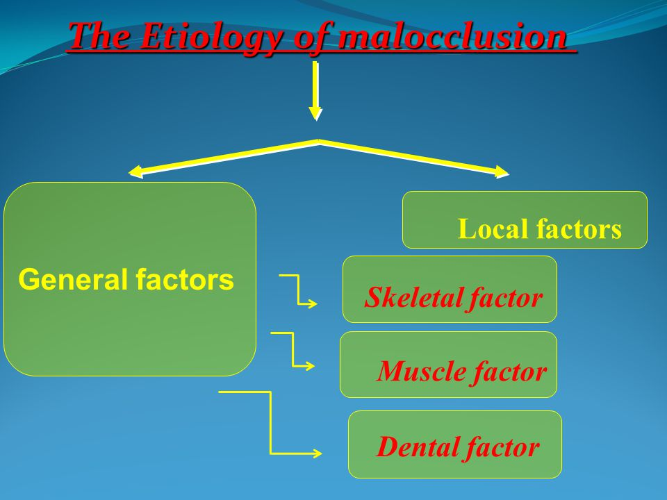 The Etiology of malocclusion