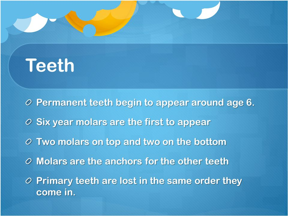 Teeth Permanent teeth begin to appear around age 6.