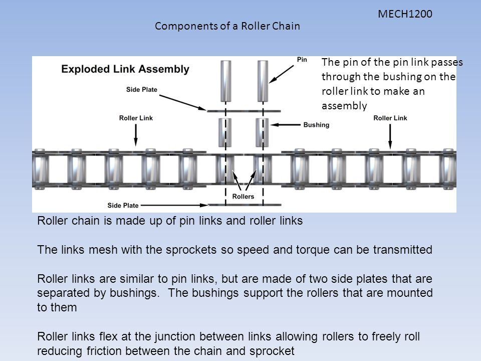 MECH1200 Components of a Roller Chain. The pin of the pin link passes through the bushing on the roller link to make an assembly.