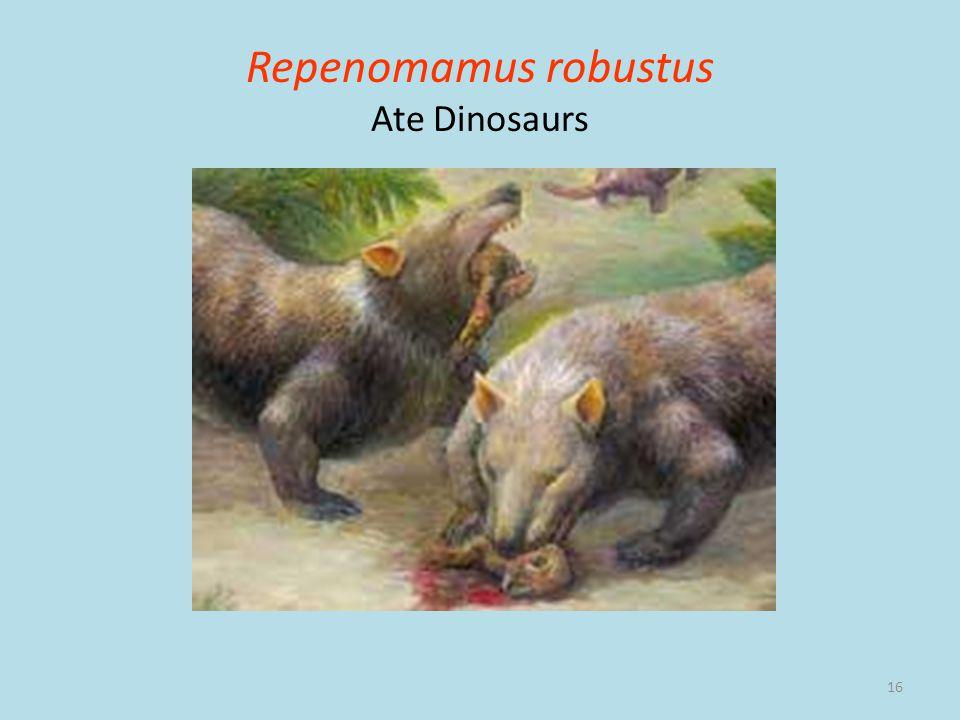 Repenomamus robustus Ate Dinosaurs
