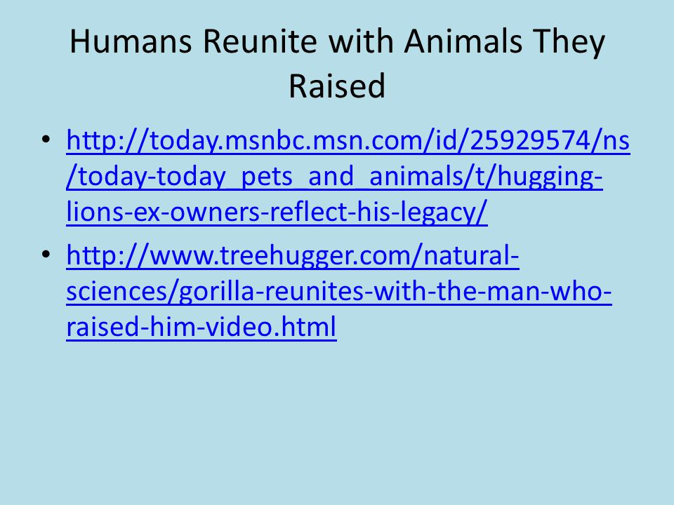 Humans Reunite with Animals They Raised
