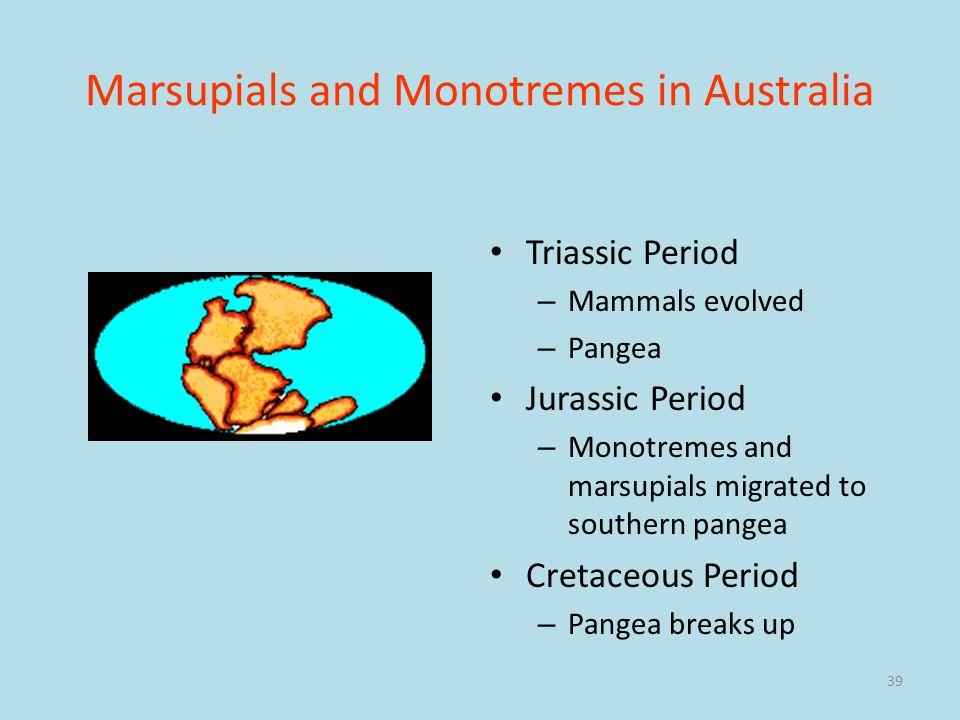 Marsupials and Monotremes in Australia