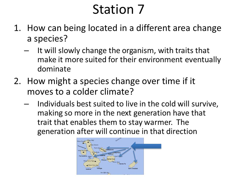 Station 7 How can being located in a different area change a species