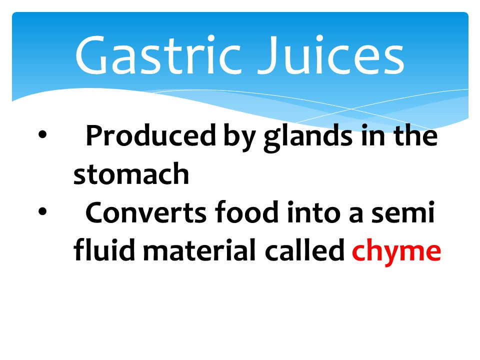 Gastric Juices Produced by glands in the stomach