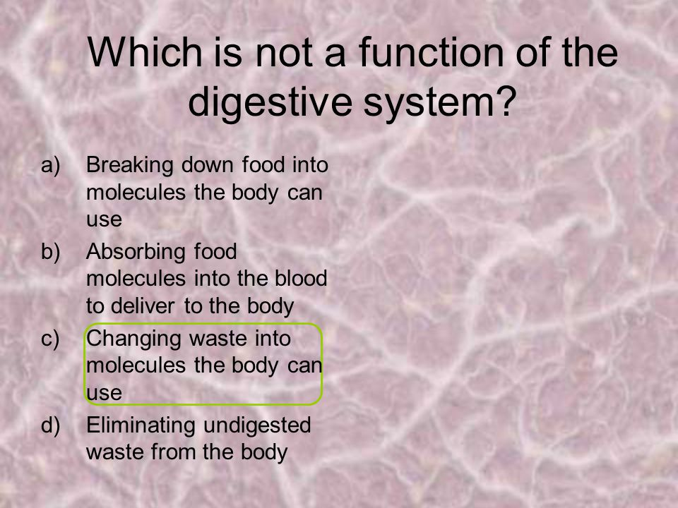 Which is not a function of the digestive system