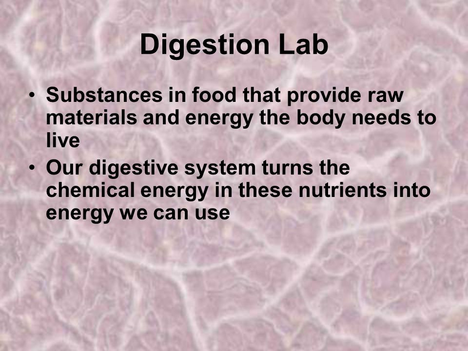 Digestion Lab Substances in food that provide raw materials and energy the body needs to live.