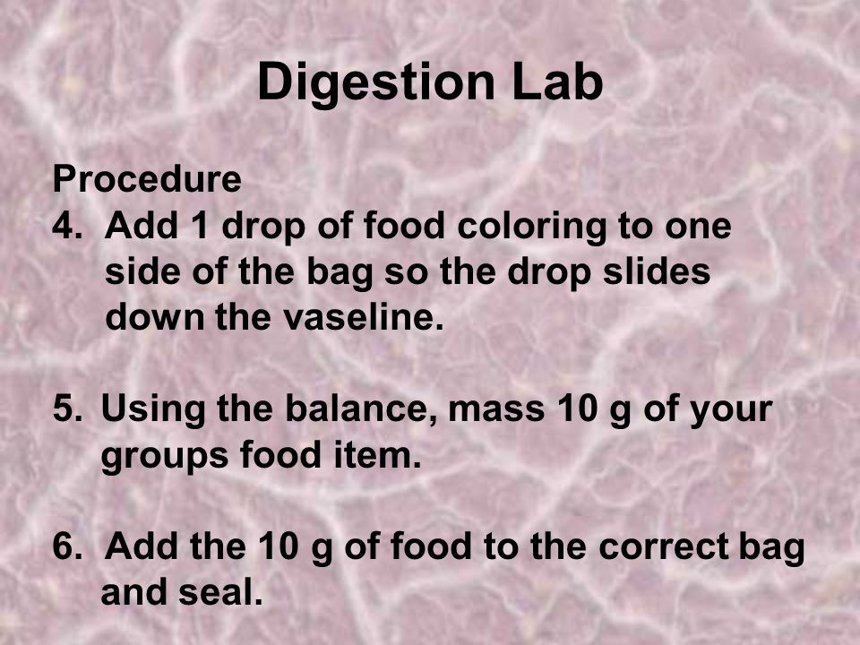 Digestion Lab Procedure 4. Add 1 drop of food coloring to one