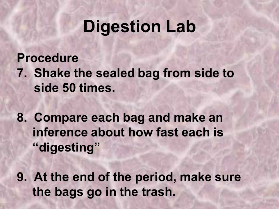 Digestion Lab Procedure 7. Shake the sealed bag from side to