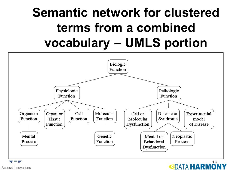 Semantic network for clustered terms from a combined vocabulary – UMLS portion