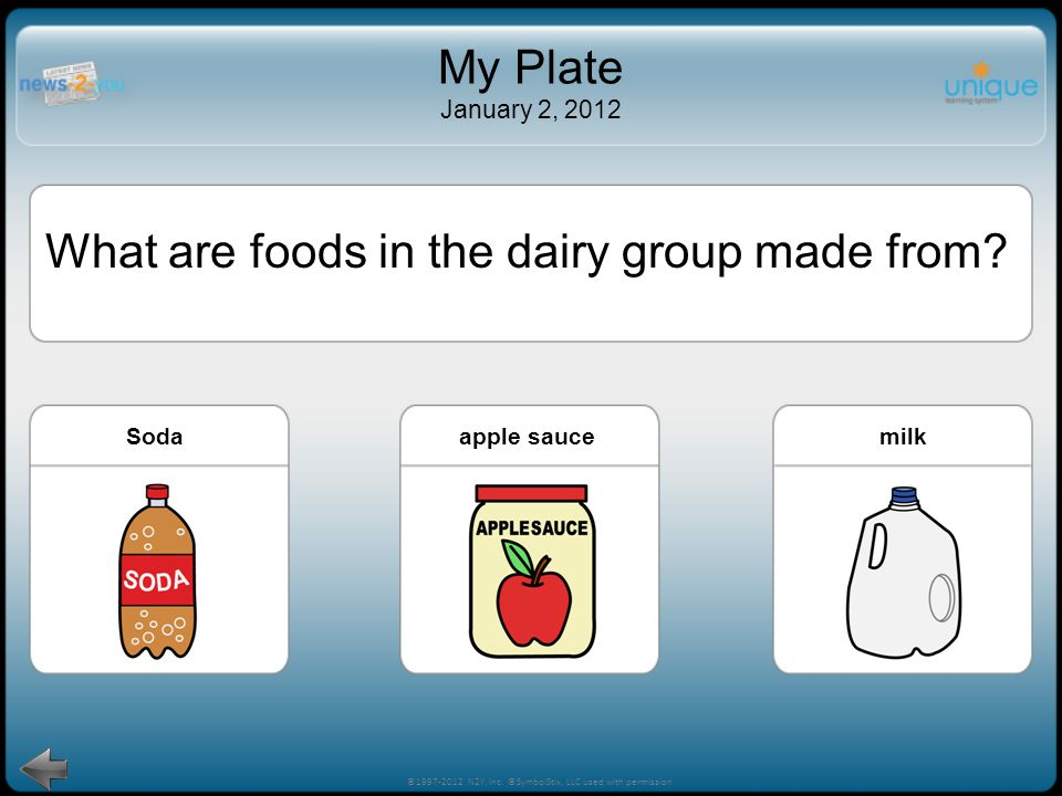 What are foods in the dairy group made from