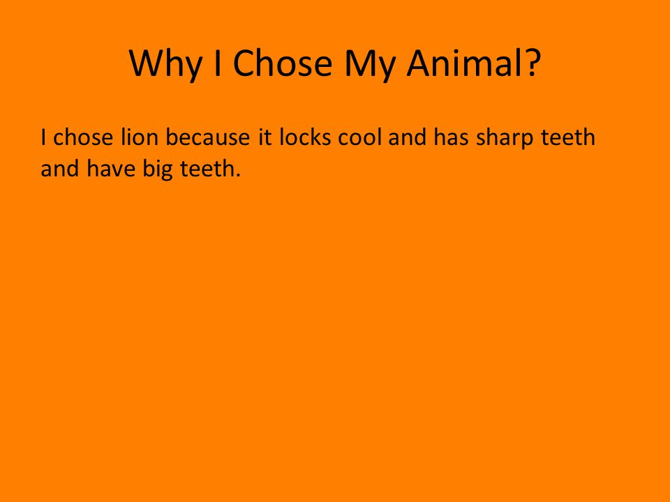 Why I Chose My Animal I chose lion because it locks cool and has sharp teeth and have big teeth.
