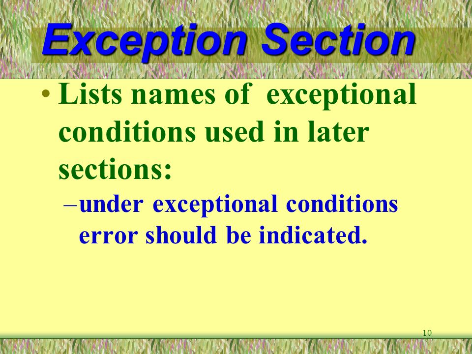Exception Section Lists names of exceptional conditions used in later sections: under exceptional conditions error should be indicated.