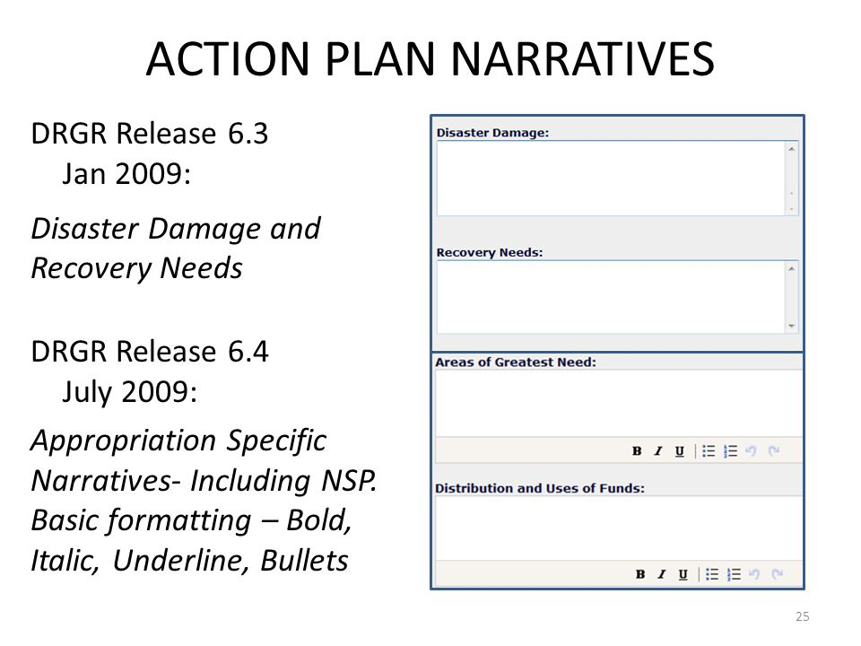 ACTION PLAN NARRATIVES