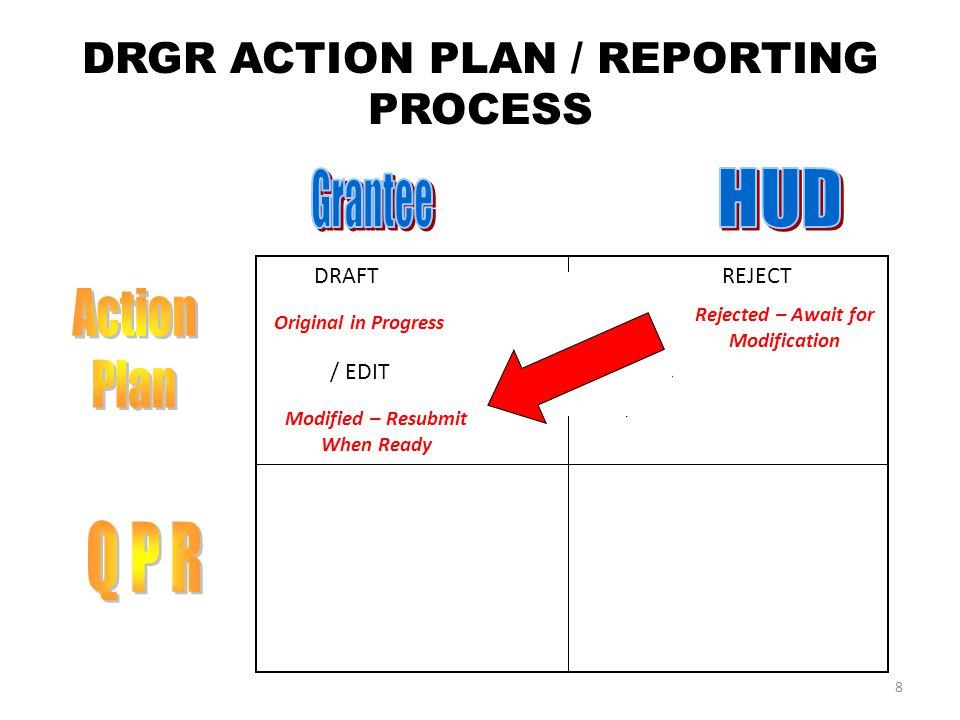 DRGR ACTION PLAN / REPORTING PROCESS