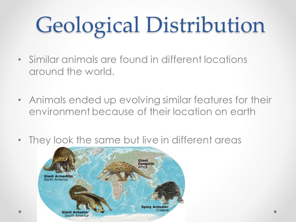 Geological Distribution