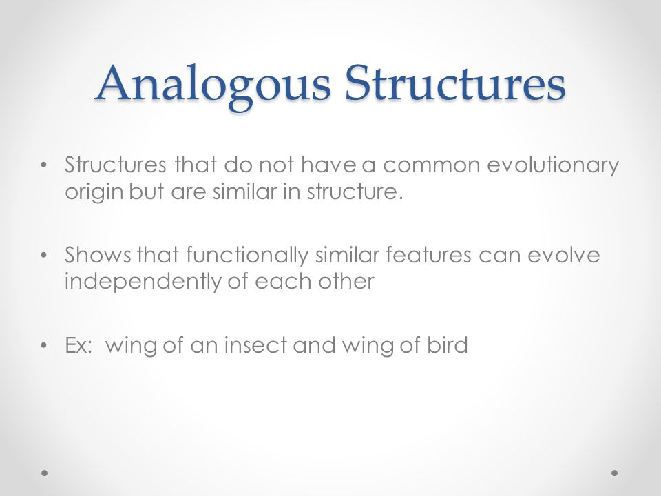 Analogous Structures Structures that do not have a common evolutionary origin but are similar in structure.