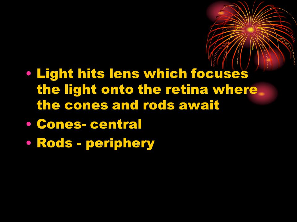 Light hits lens which focuses the light onto the retina where the cones and rods await