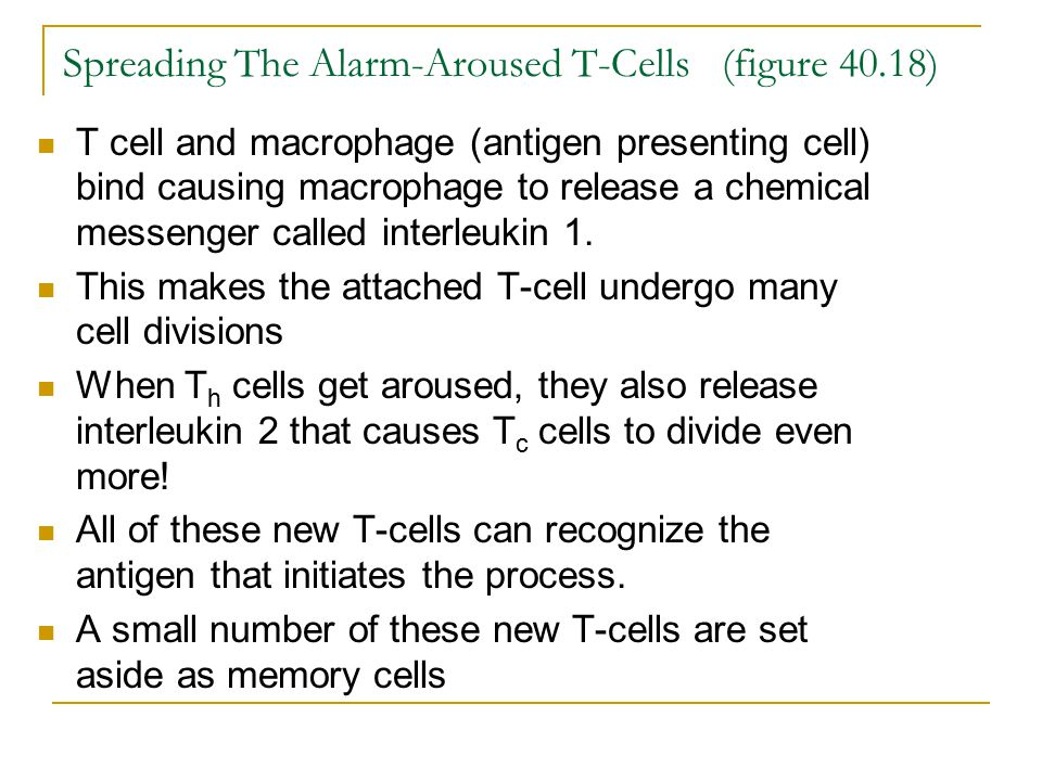 Spreading The Alarm-Aroused T-Cells (figure 40.18)