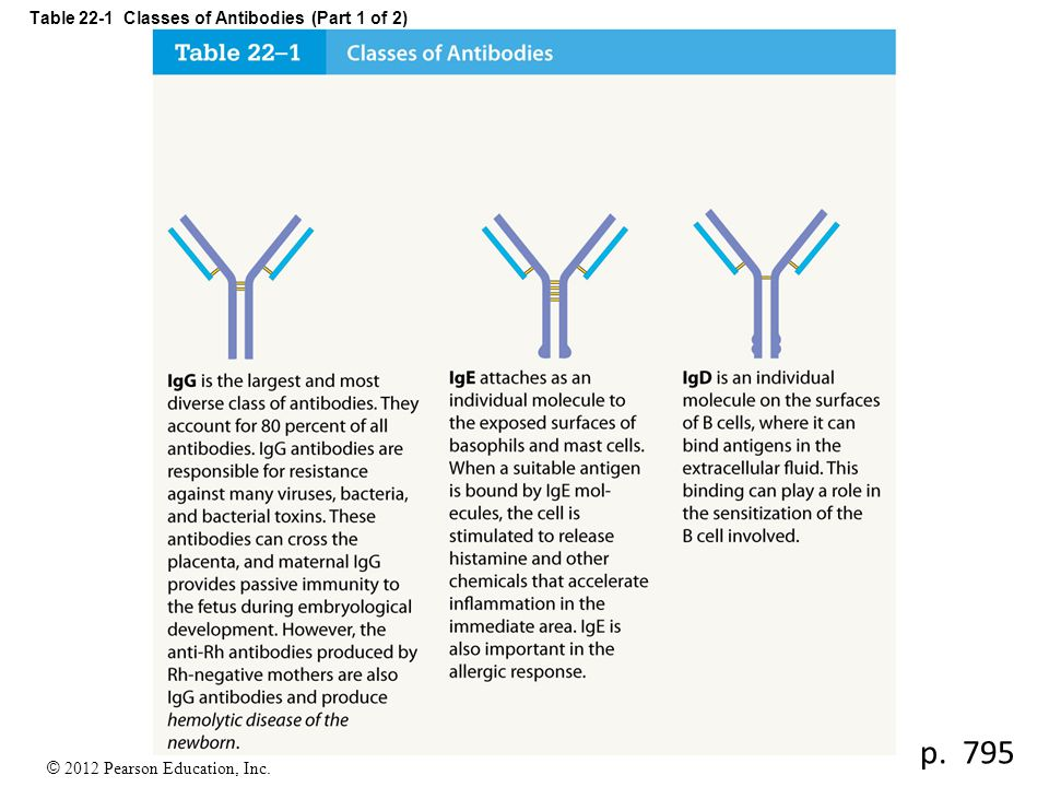 Table 22-1 Classes of Antibodies (Part 1 of 2)