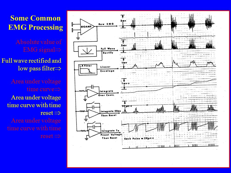 Some Common EMG Processing