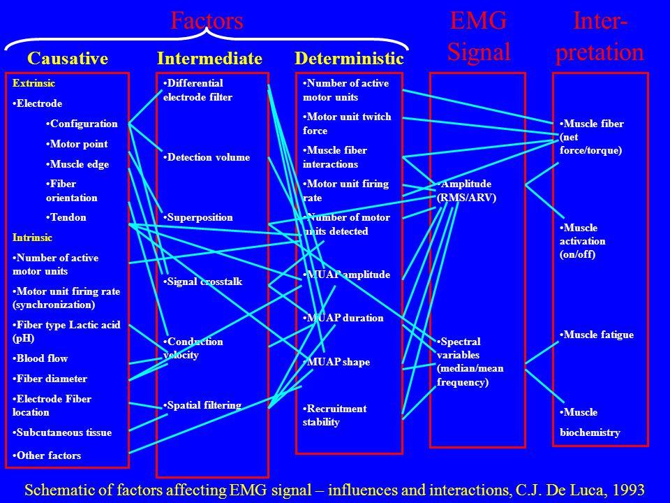 Factors EMG Signal Inter-pretation Causative Intermediate