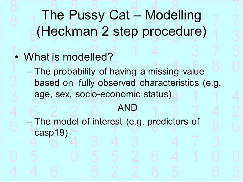 The Pussy Cat – Modelling (Heckman 2 step procedure)