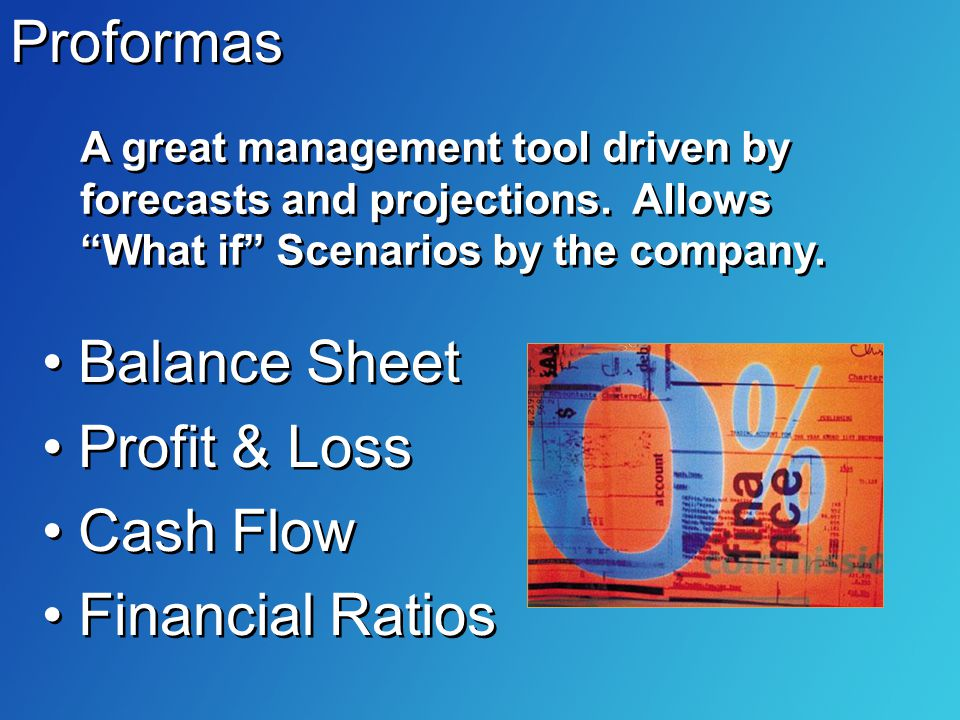 Proformas Balance Sheet Profit & Loss Cash Flow Financial Ratios