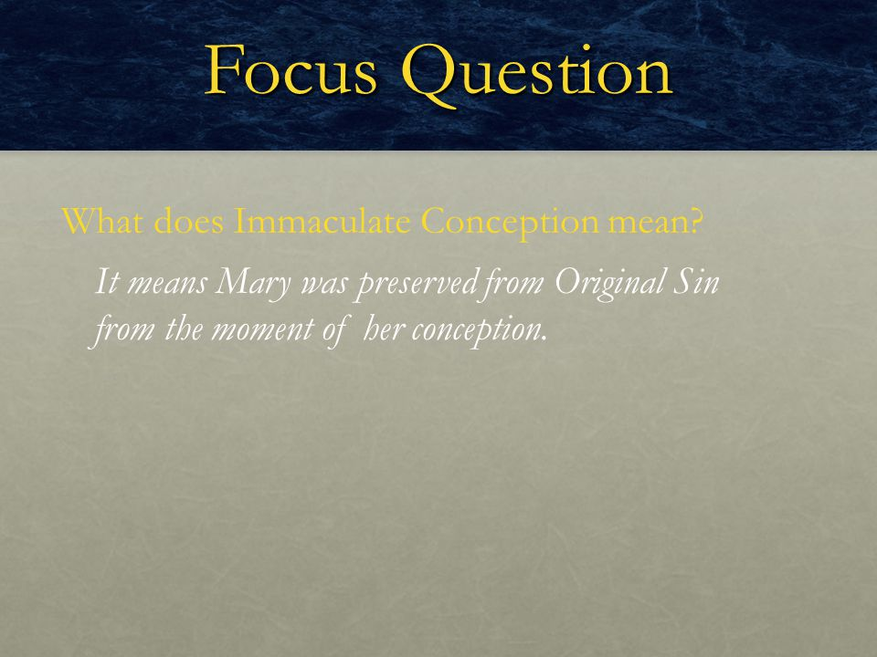 Focus Question What does Immaculate Conception mean