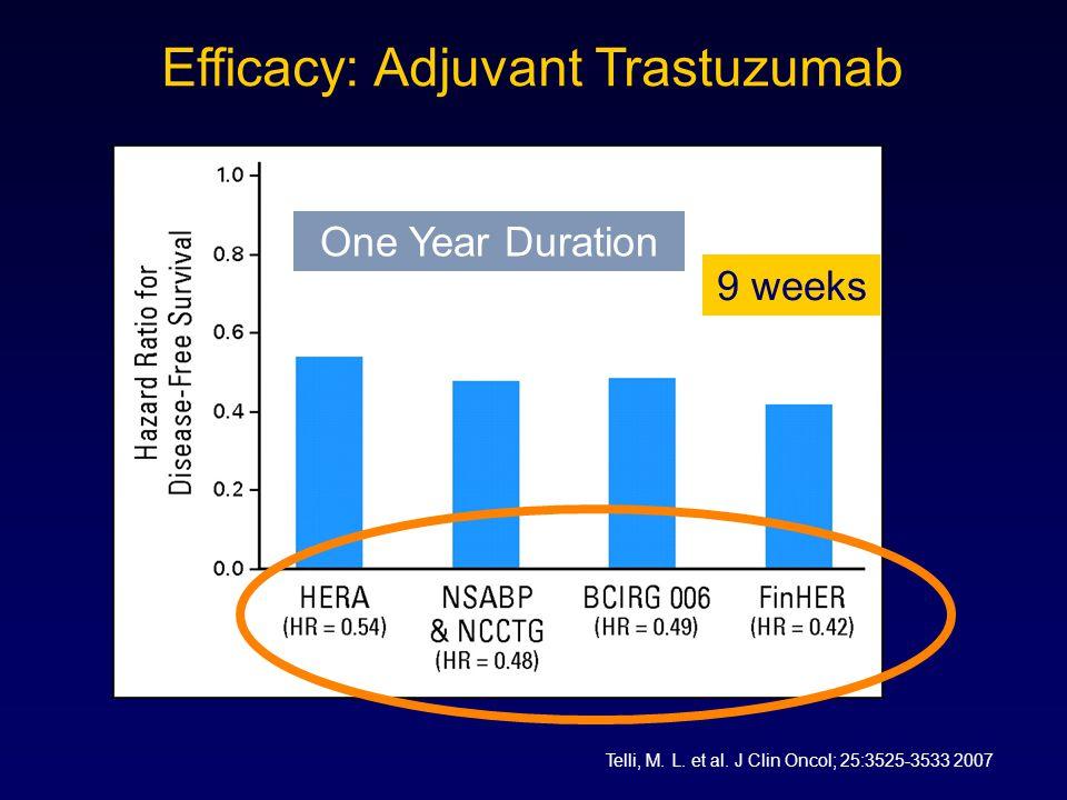 Efficacy: Adjuvant Trastuzumab