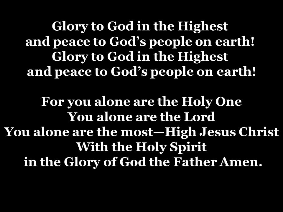 Glory to God in the Highest and peace to God's people on earth!