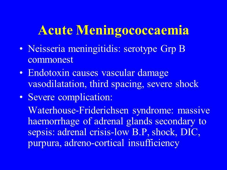Acute Meningococcaemia