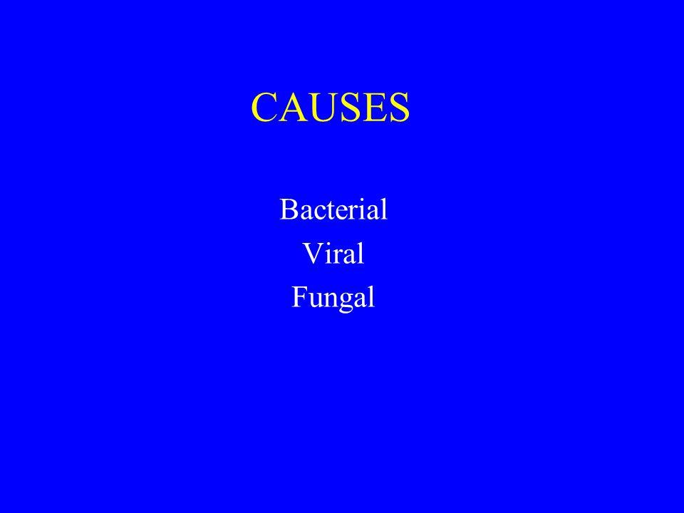 Con Samaan Bacterial Viral Fungal