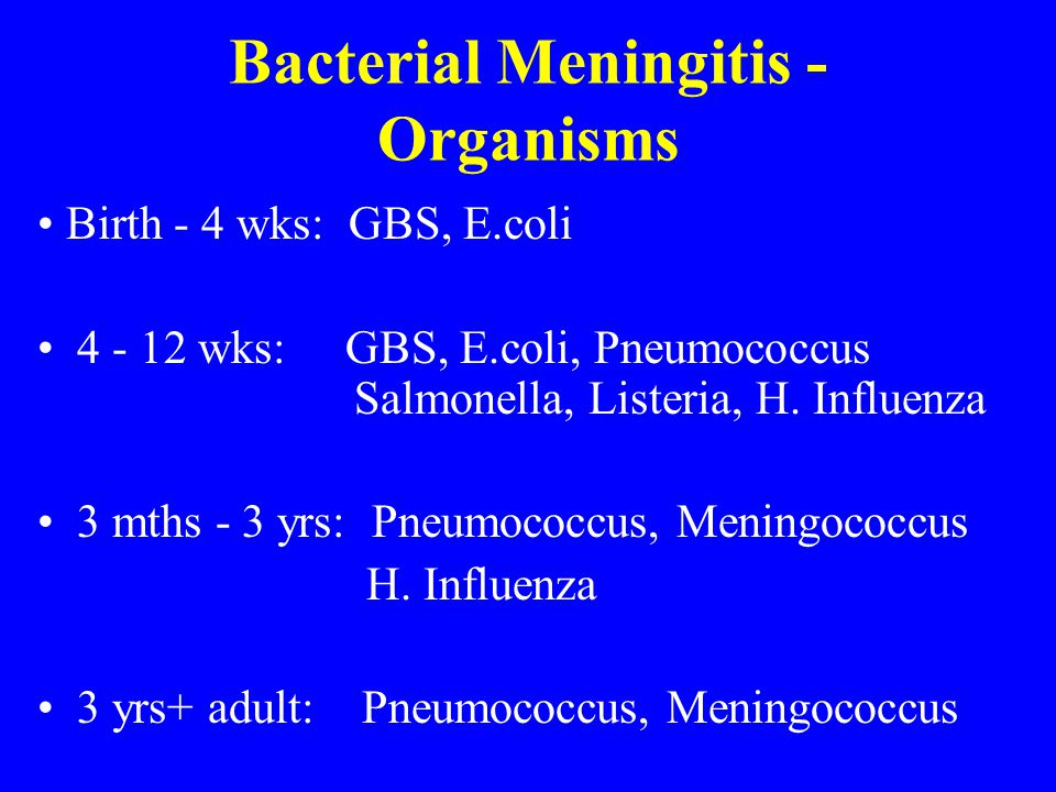 Bacterial Meningitis - Organisms