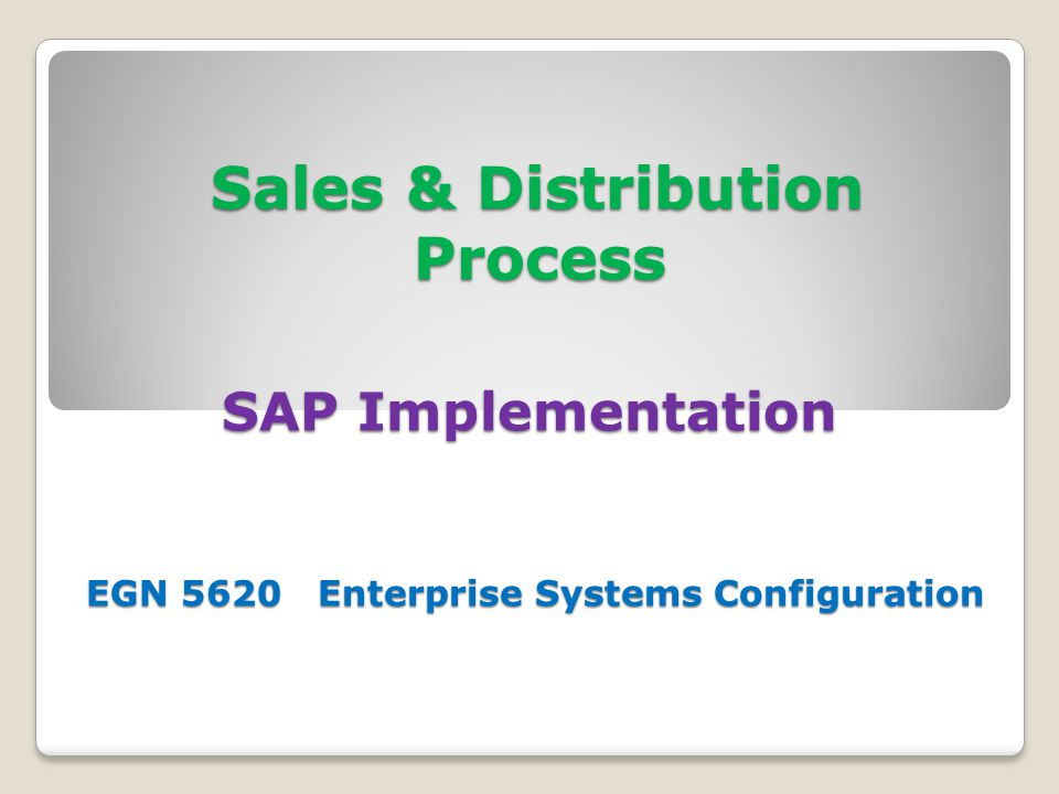 Sales & Distribution Process SAP Implementation EGN 5620 Enterprise Systems Configuration