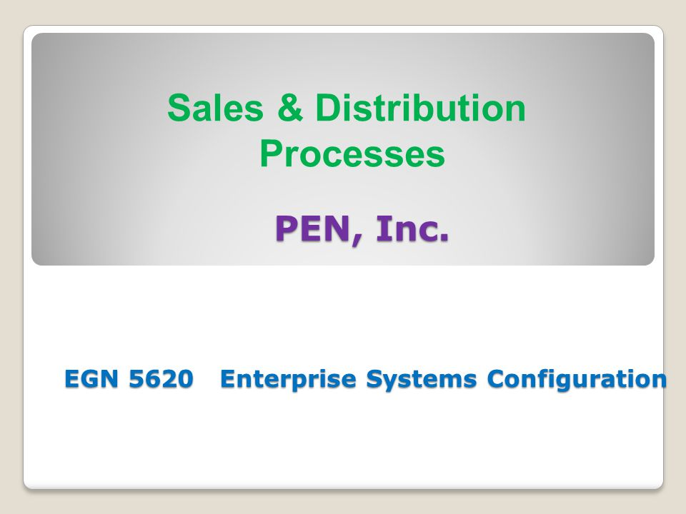 PEN, Inc. EGN 5620 Enterprise Systems Configuration