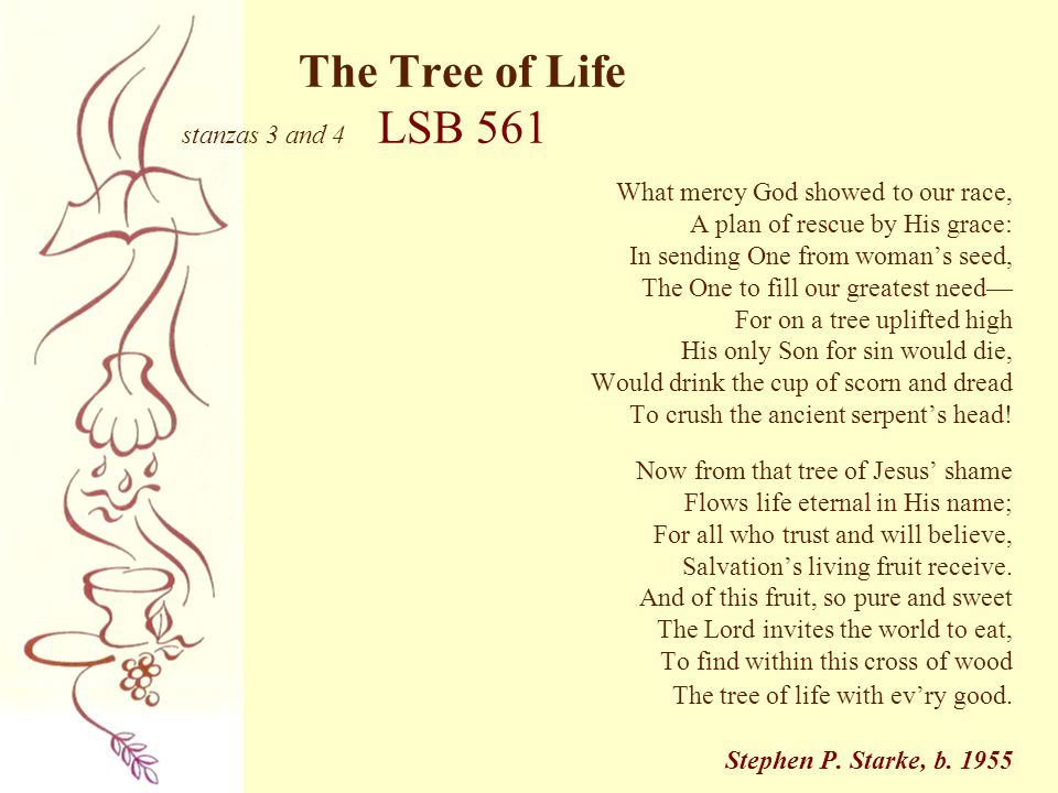 The Tree of Life stanzas 3 and 4 LSB 561