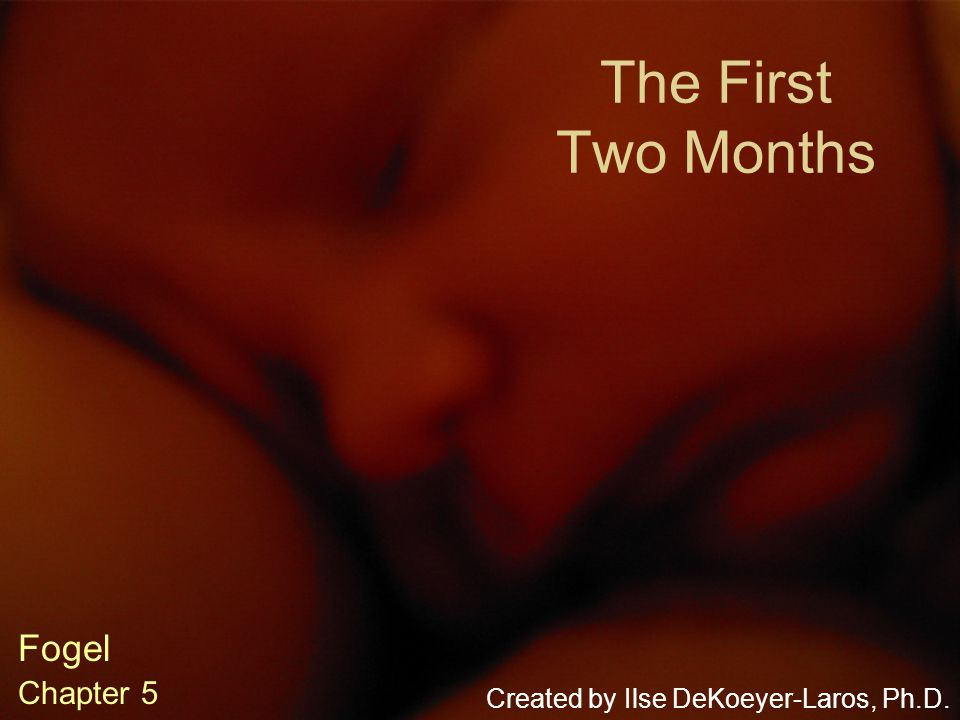 The First Two Months Fogel Chapter 5