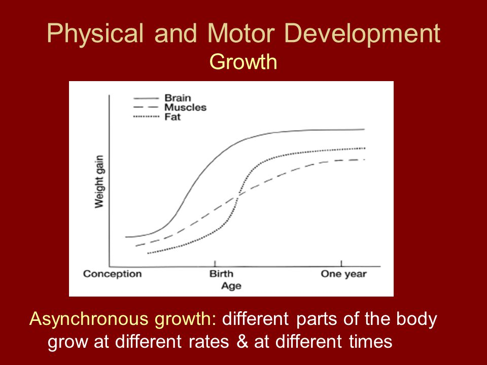 Physical and Motor Development Growth