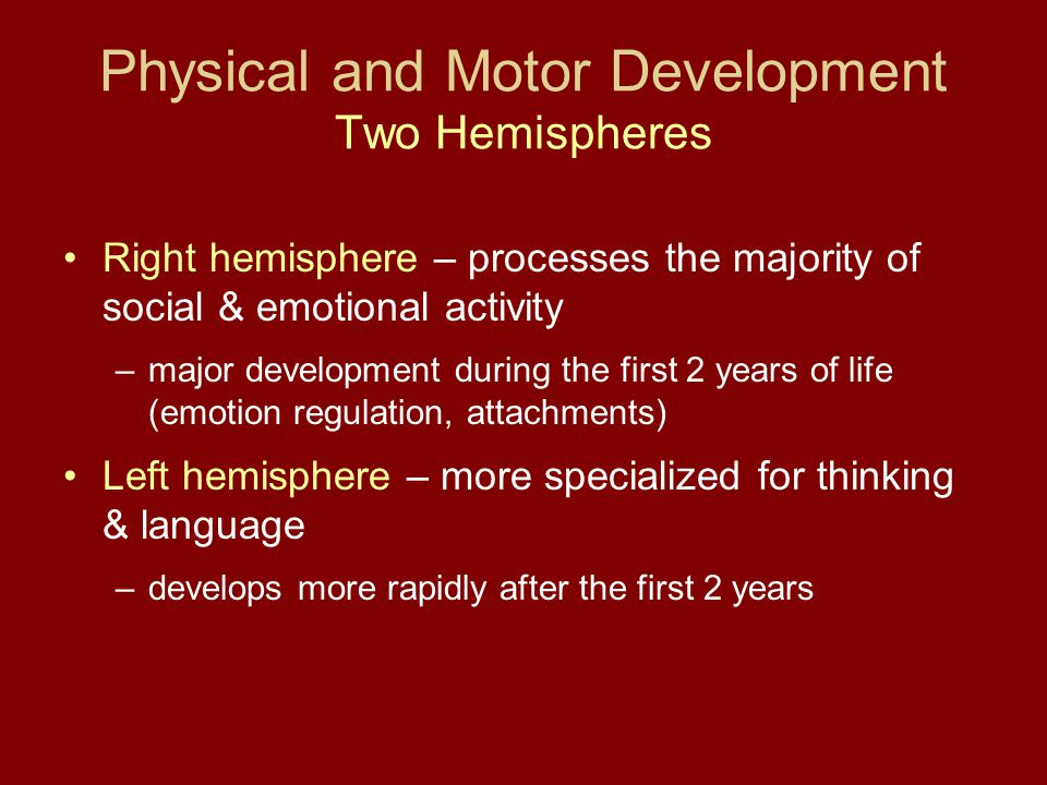 Physical and Motor Development Two Hemispheres